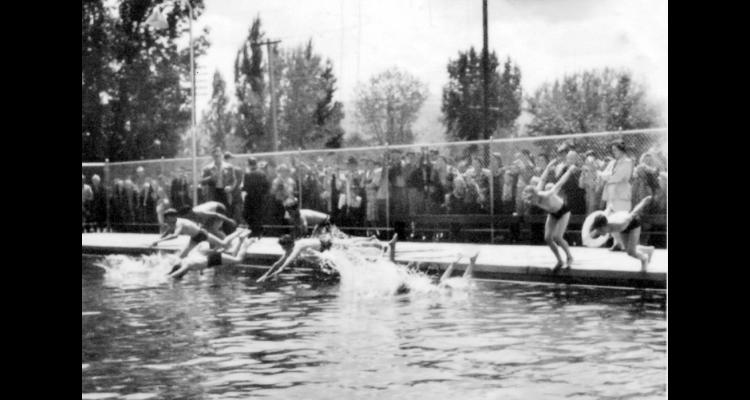 A swimming competition at the Deer Park pool